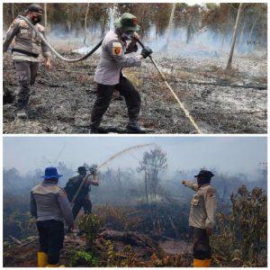 Polda Riau Tangani Karhutla 75 Titik Api Berhasil Dipadamkan
