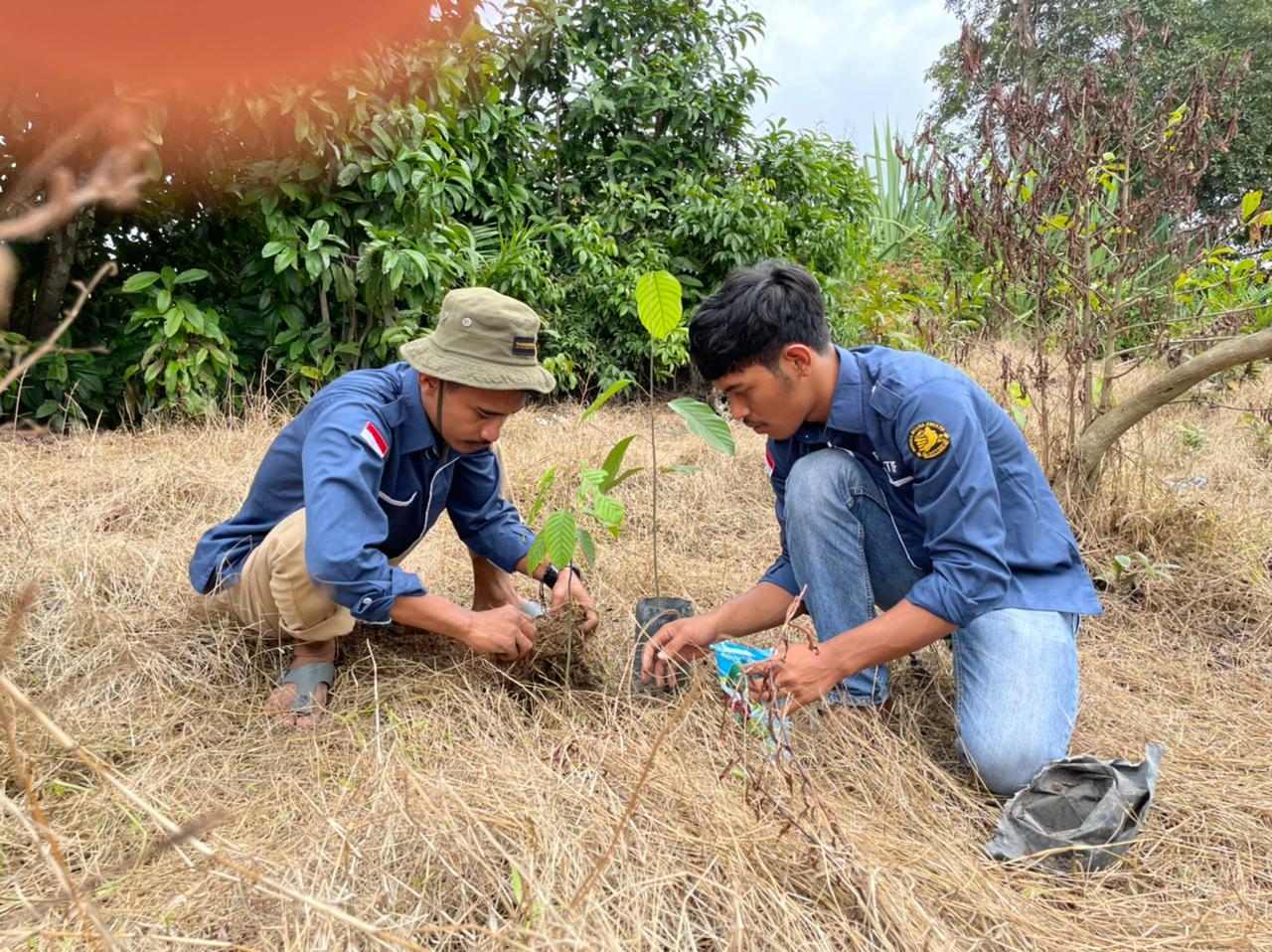 Seniman Muda PANATIF Dan SGC Tanam 1.000 Pohon di Daerah Aliran Sungai Tapung.